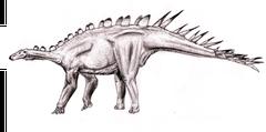 Bild eines Dacentrurus