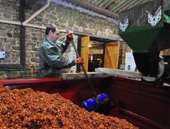 Pierrick Logiou, cidrerie de Prat Rouz à Penvénan, Bretagne