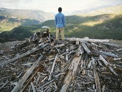 Deforestación - Antropomedia
