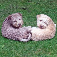 Lisa en zus Flora