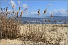 Strand bei Munkmarsch,