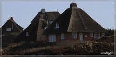 vorbei an hübschen Häusern mit Reetdächern.