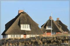 Die Reetdachhäuser in den Dünen sind besonders hübsch.