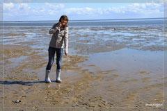 Nathi weiter auf der Suche nach einem Wattwurm...