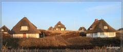 Reetdachhäuser im Sonnenuntergang...