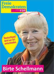 Birte Schellmann:  Bildung/Kultur, Wirtschaft, Stadtentwicklung