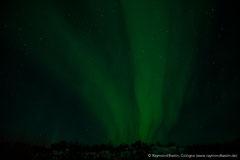 Island Polarlicht (Iceland Northern Lights)