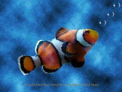 PATRICIA - Heureux comme un poisson dans l'eau