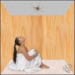 NINI - Avoir une araignée au plafond