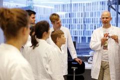 Immunsystem erklärt am Deutschen Rheumaforschungszentrum