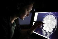 Forscherin bei der Untersuchung von Hirnarealen