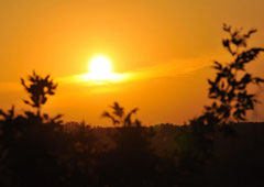 Sonnenuntergang am Kis-Balaton /Christa Brunner (c)