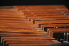 Marimbaphon (Detail) (Foto: Johannes Scherzer)
