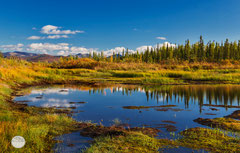 "Bild: reflections in a pond at Dalton Highway, Alaska, ""Dalton`s reflection pond""; www.2u-pictureworld.de"