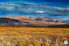 "Bild: Brooks Range in the Arctic Wildlife Refuge, Alaska, ""colours in the eveing"", www.2u-pictureworld.de"
