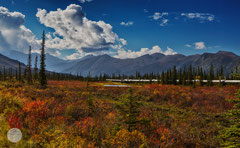 "Bild: oil pipeline at Dalton Highway, Alaska, ""along the pipeline""; www.2u-pictureworld.de"