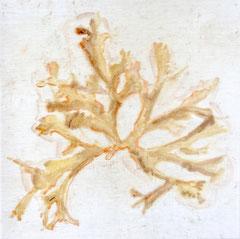 Ohne Titel 2019, Gouache auf gefärbter Baumwolle, 60 x 60 cm