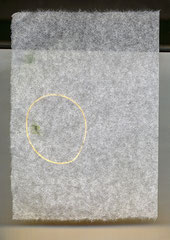 60 x 42 cm 2008