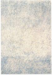 250 x 153 cm 2009