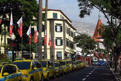 Funchal, Avenida Arriaga in Höhe des Jardim Municipal