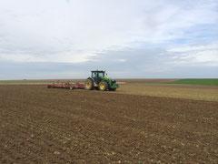 Préparation pour semis de blé
