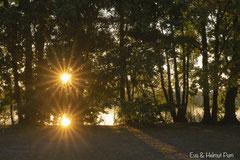 Sonnenaufgang - Spiegelbild der Sonne im See