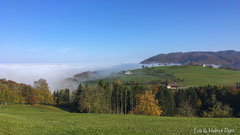 Nebelstimmung im Tal