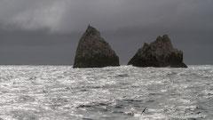 Shag Rocks, Inselgruppe in den Roaring Forties