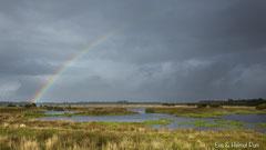 Regenbogen über Seenlandschaft