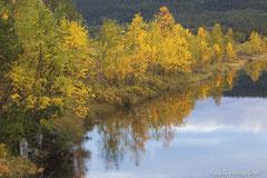 Herbstliche Verfärbung mit Spiegelbild