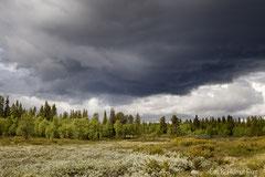 Gewitterstimmung im Norden