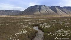 Adventtal auf Spitzbergen