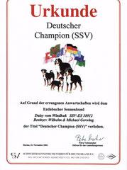 SSV Champion