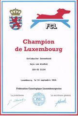 Luxemburger Champion