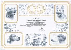 Internationaler Champion FCI