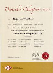 VDH Champion