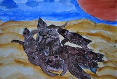 """"""" Wasserschildkröten""""   Aquarellpapier      19,5 cm /  21 cm     ..."""