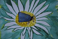 """ Schmetterlingsblau""   Aquarellpapier      21 cm / 19, 5 cm       .."