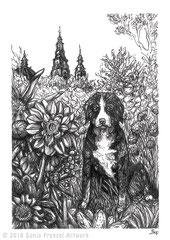 """Dahliengarten mit Hund und dem Fuldaer Dom im Hintergrund. Zeichnung zum Inktober-Stichwort """"drooling - sabbern"""". 10,5 cm x 14,8 cm, - verkauft -"""