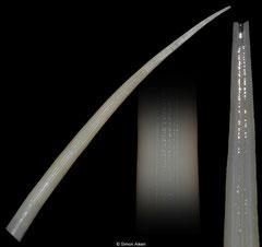 Fissidentalium cf. serrulatum (Philippines, 124,3mm)
