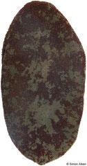 Cryptochiton stelleri (Kamchatka, Russia, 176mm)