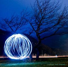 Baumlicht