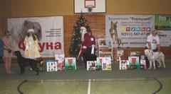 24.12.2011г г. Псков. Ника