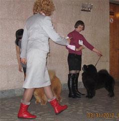 Минск 31,03,2012г  Ника