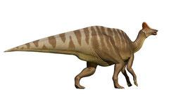 アムロサウルス