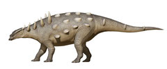チョンギュアンサウルス