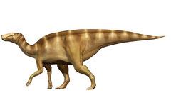 クリトサウルス