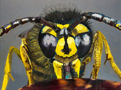 Wasp, 2017, oil on cotton, 60 x 80 cm