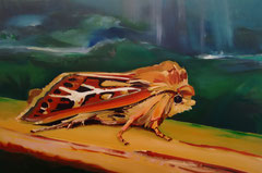Antler moth, oil on linen, 80 x 120 cm