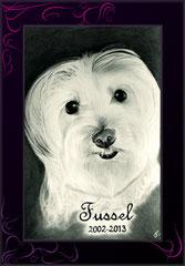 Hundezeichnung weiß auf schwarz gezeichnet